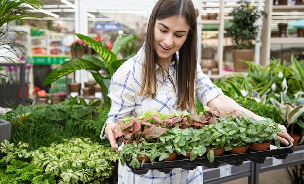 Bella giovane donna in un negozio di fiori e la scelta dei fiori.