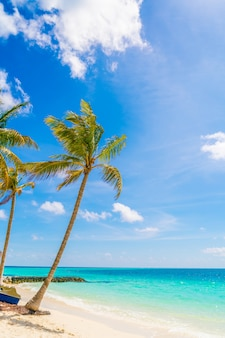 Bella isola tropicale delle maldive, spiaggia di sabbia bianca e mare con palme intorno