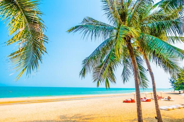 Bella palma sulla spiaggia
