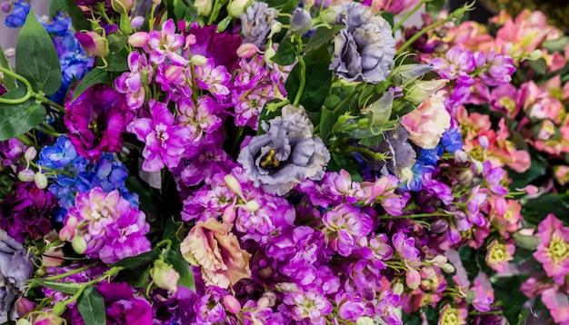 Bella parete fatta di fiori viola viola rossi, rose, tulipani, stampa-muro, sfondo