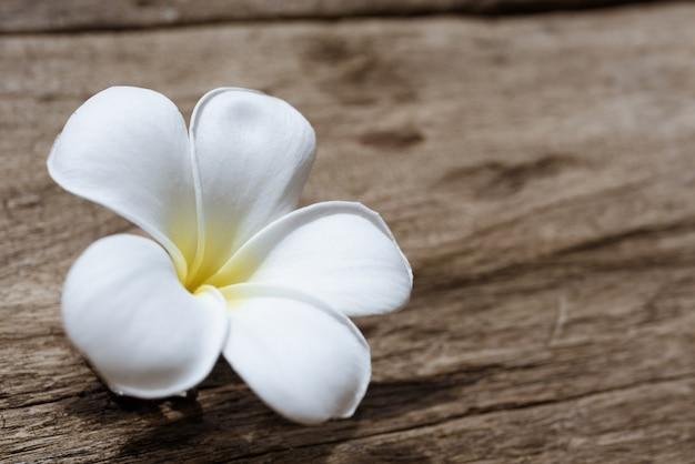 Bella plumeria o tempio, fiore spa sul tavolo di legno rustico