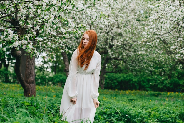 Bella ragazza dai capelli rossi in un abito bianco tra alberi di mele in fiore nel giardino.