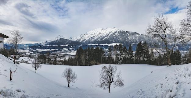 Bella ripresa di una catena montuosa circondata da alberi di pino in una giornata nevosa