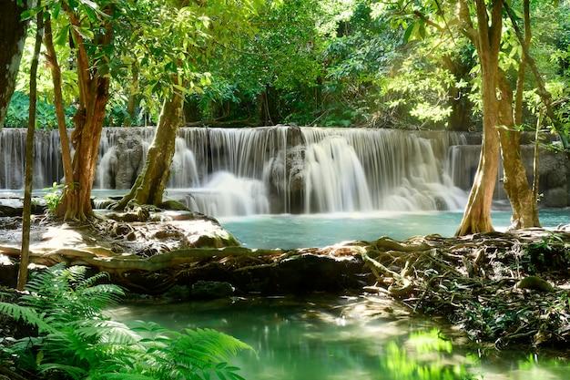 Bella scenografia della cascata e foglie verdi per rinfrescante e rilassante sfondo.