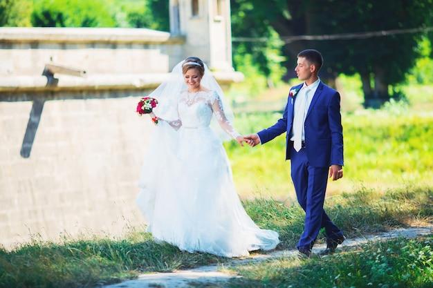 Bella sposa in un vestito costoso che cammina nel bosco in natura, tenendosi per mano. ritratto di nozze. fotografia, concetto.
