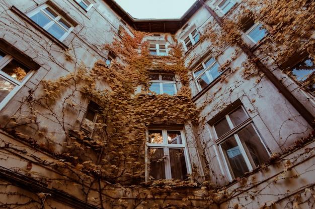 Bella vecchia casa in foglie di autunno