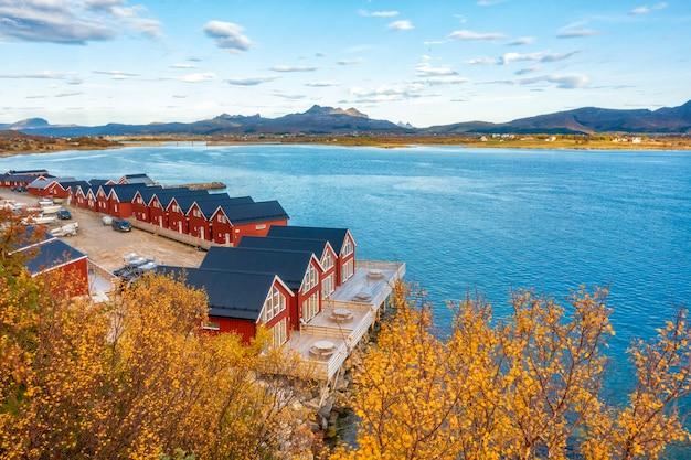Bella vista colorata del paesaggio nelle isole lofoten
