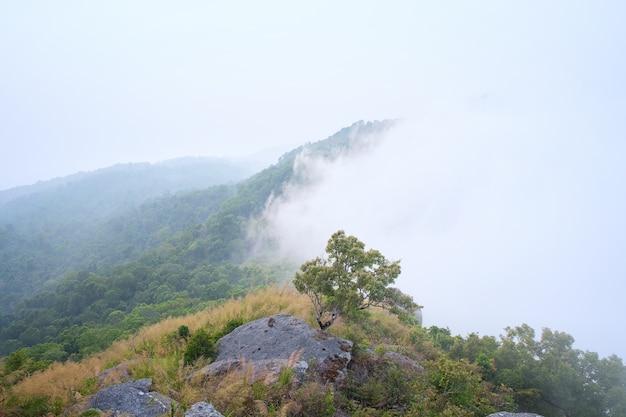 Bella vista dal paesaggio del flusso della valle della montagna verde e nuvole sul cielo, khaoluang unione sovietica