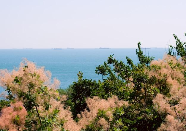 Bella vista del paesaggio