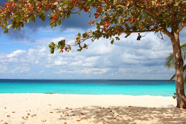 Bella vista sul mare azzurro