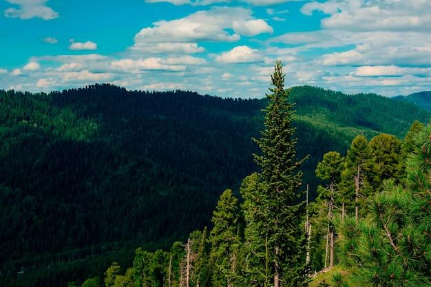 Bella vista sulle montagne e sul cielo in estate