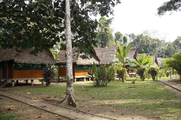 Belle cabine per i turisti nella giungla di puerto maldonado. perù