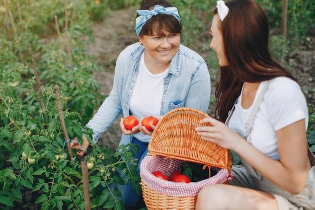Belle donne lavora in un giardino