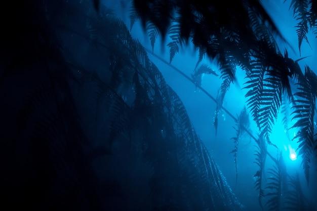 Belle foglie esotiche in una foresta tropicale con una luce blu che splende vicino