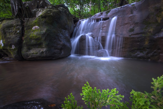 Belle foresta pluviale e cascata alla tailandia.