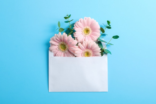 Belle gerbere fresche in busta, spazio per il testo