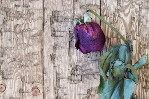 Belle rose appassite dell'annata su un fondo rustico.