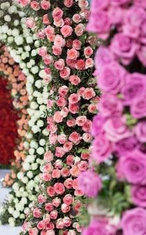Belle rose multicolori rose bianche, rosa e arancio
