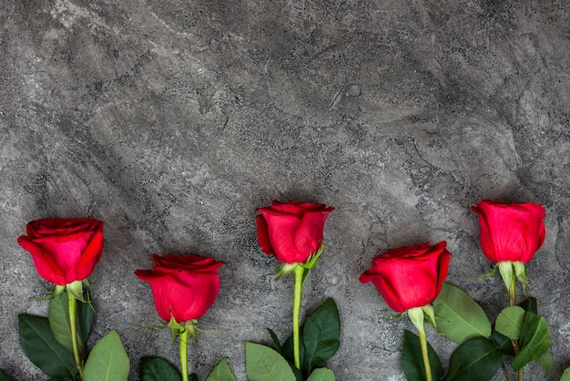 Belle rose rosse e fresche