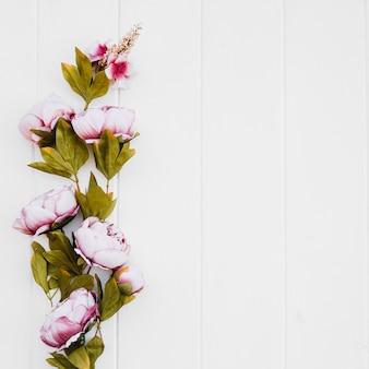 Belle rose su sfondo bianco con spazio a destra