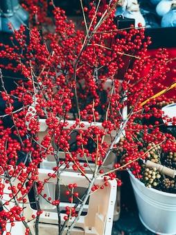Bellissima decorazione natalizia