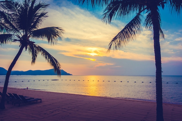 Bellissima spiaggia e mare con palme