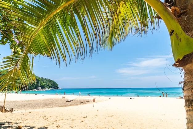 Bellissima spiaggia tropicale e mare con palme da cocco in un'isola paradisiaca