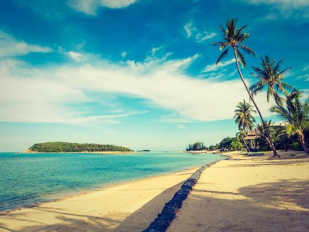 Bellissima spiaggia tropicale e mare con palme da cocco