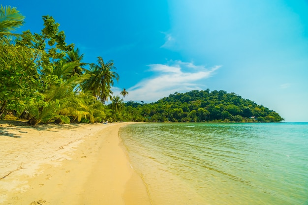 Bellissima spiaggia tropicale e mare