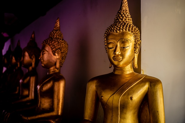 Bellissime statue dorate di buddha
