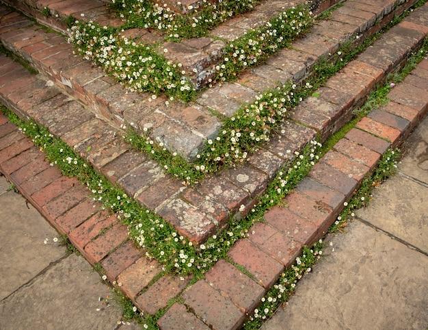 Bellissimi fiori, alberi e piante e giardini nei giardini sissinghurst caslte
