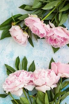 Bellissimi fiori di peonia rosa