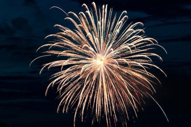 Bellissimi fuochi d'artificio nel cielo notturno per una vacanza.