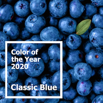 Bellissimi mirtilli a colori dell'anno 2020 classic blue.