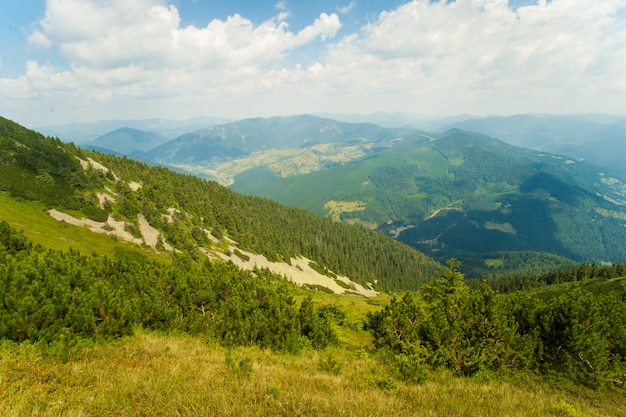 Bellissimi prati sulle montagne