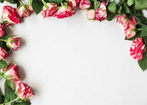 Bellissimo bianco con fiori sui bordi