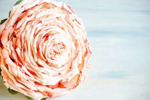 Bellissimo bouquet per la sposa