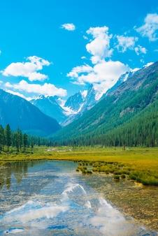 Bellissimo ghiacciaio riflesso nell'acqua pura di montagna con piante sul fondo.