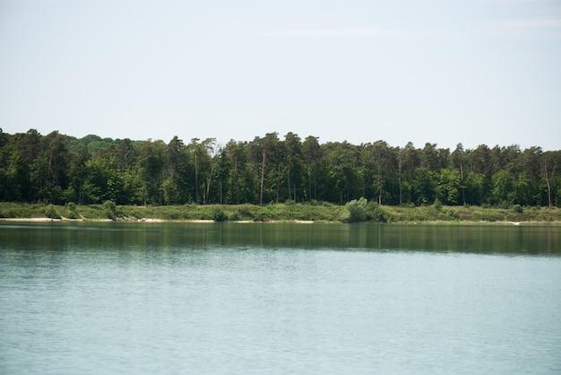 Bellissimo lago e alberi sul lato