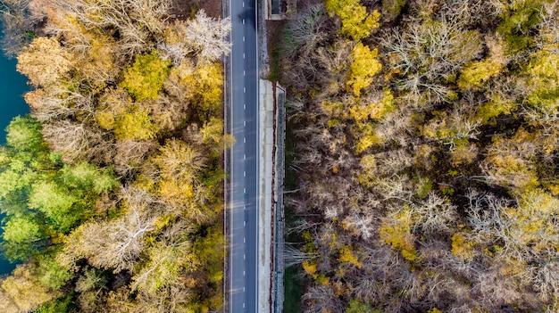 Bellissimo paesaggio con una strada lungo un fiume di montagna, alberi autunnali con verde, giallo,