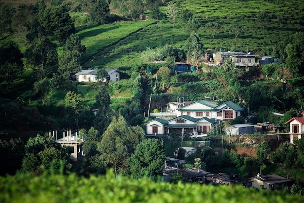 Bellissimo paesaggio di ceylon. piantagioni di tè e case antiche