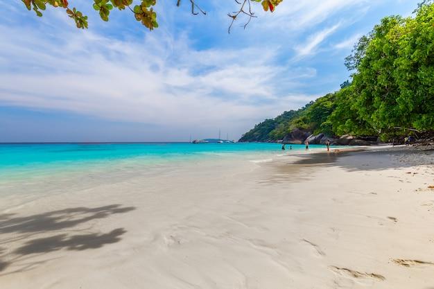 Bellissimo paesaggio e acqua cristallina all'isola di similan, mare delle andamane, phuket, thailandia