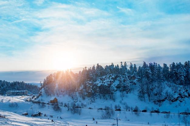 Bellissimo paesaggio invernale con alberi innevati