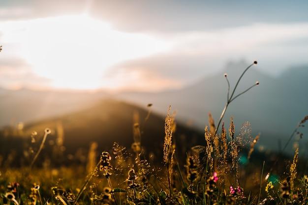 Bellissimo paesaggio naturale di montagne, montagne del caucaso, russia, elbrus