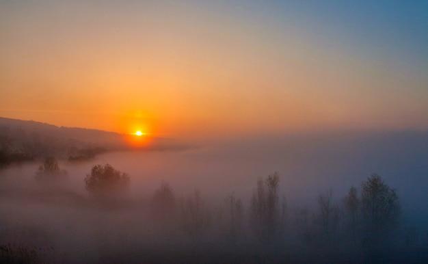 Bellissimo paesaggio nebbioso di alba autunnale.
