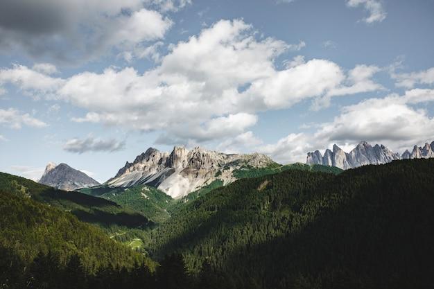Bellissimo paesaggio sparato di montagne coperte di foreste sempreverdi e picchi bianchi durante il giorno