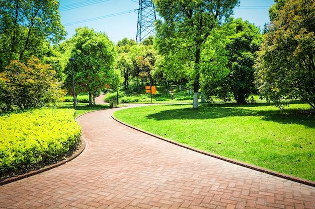 Bellissimo parco cittadino