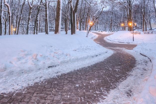 Bellissimo parco con un sentiero nella neve