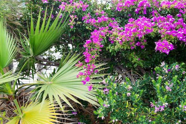 Bellissimo sfondo di fiori e foglie