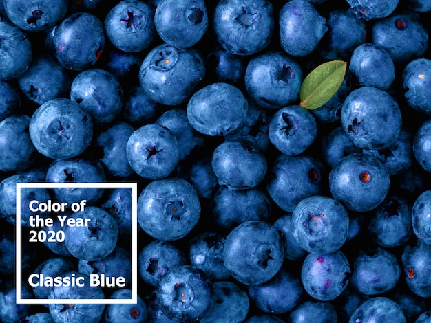 Bellissimo sfondo di mirtilli a colori del 2020 classico blu.
